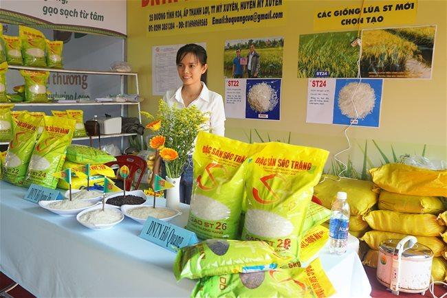 Gạo ST25, ST24 tiếp tục được thị trường Mỹ, Trung Quốc chọn mua
